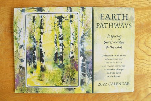 Calendar Front illustration beech trees in forest
